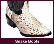 Exotic Snake Western Boots